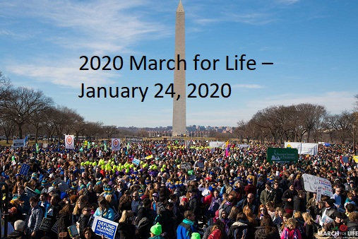 March for Life Crowd